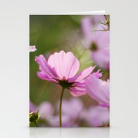 Cotton Candy Cosmos Stationery Cards