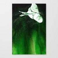 Luna Moth Canvas Print