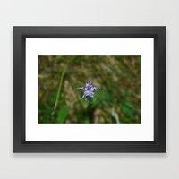 Mountain Flower Framed Art Print