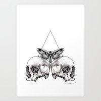 Skull Moth Art Print