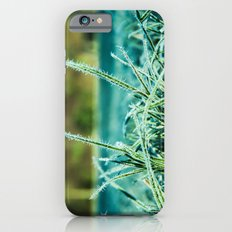 on a cold and sunny morning iPhone 6 Slim Case