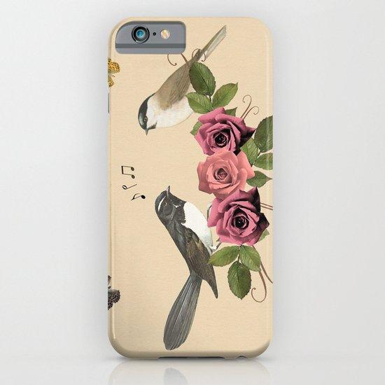 Song Bird 5 iPhone & iPod Case