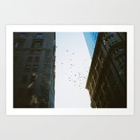 Birds In New York Art Print