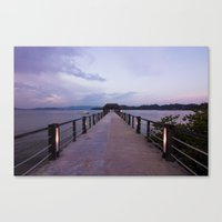 Out Canvas Print