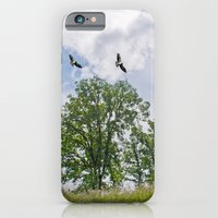 The buzzard tree iPhone 6 Slim Case