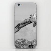 Osprey Over Olympus iPhone & iPod Skin