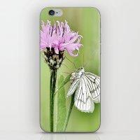 In my little world iPhone & iPod Skin