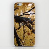 October branches iPhone & iPod Skin