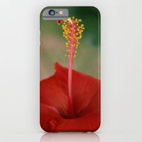 iPhone & iPod Case featuring Hibiscus I by Kama Storie