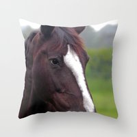Brown mare Throw Pillow