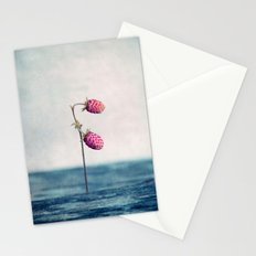 small Stationery Cards