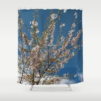 Joy of life! Spring pink cherry blossom tree against blue sky.  Shower Curtain