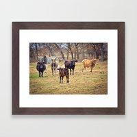 Texas. Framed Art Print