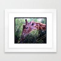 Oasis Giraffe Framed Art Print