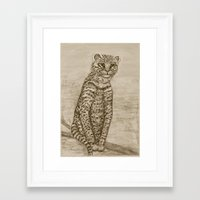 Ocelot Watching, By Ave … Framed Art Print
