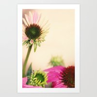 Floral Photography Art Print