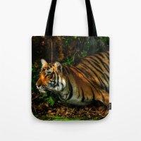 Bengal Beauty Tote Bag