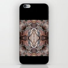 Petrified Wood in Abstract iPhone & iPod Skin