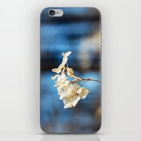 Summer's Ghost I iPhone & iPod Skin