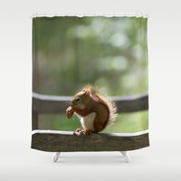 Red Squirrel Snack Time Shower Curtain