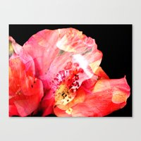 Canvas Print featuring Double Exposed Flowers. by SmallIslandInTheSun