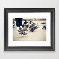 Birds. Framed Art Print