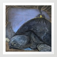 turtle Art Prints featuring Turtle by Pat Butler