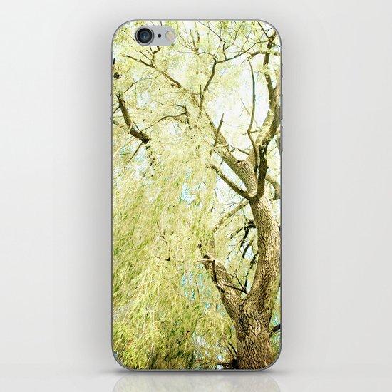 Willow Tree iPhone & iPod Skin