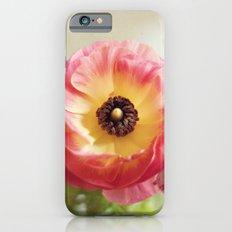 Ranculus iPhone 6 Slim Case