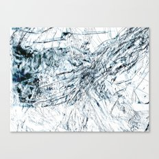 Cellophane Canvas Print