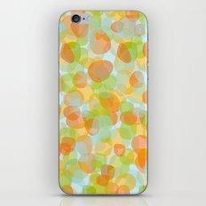 Pebbles Orange iPhone & iPod Skin
