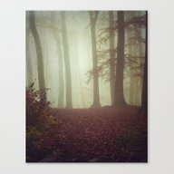 November Light Canvas Print