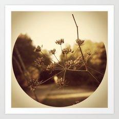 Delicate Branches Art Print