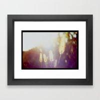 Evening Light In The Fie… Framed Art Print