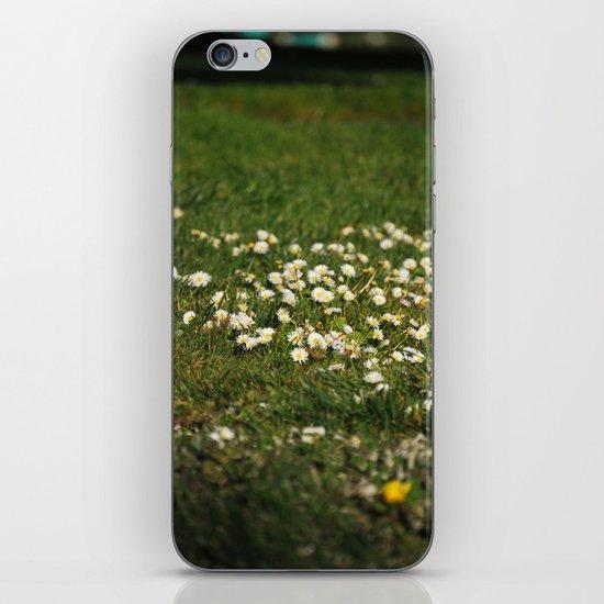 Dasies iPhone & iPod Skin