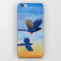 Taiwan Blue Magpies (2) iPhone & iPod Skin