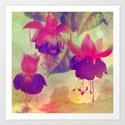 fushia    http://society6.com/clemm?promo=X9B3VVZDM7J6 Art Print