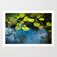 Lily Pads, Ripples And G… Art Print