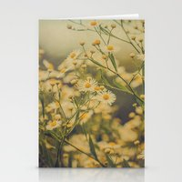 Daisy Fleabane Botanical Stationery Cards