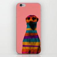 Hakuna Piñata iPhone & iPod Skin