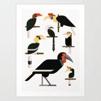 Hornbills  Art Print