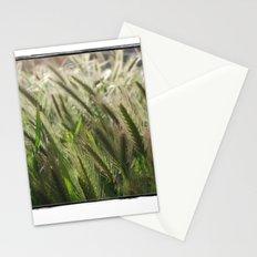 Soft Breeze Stationery Cards