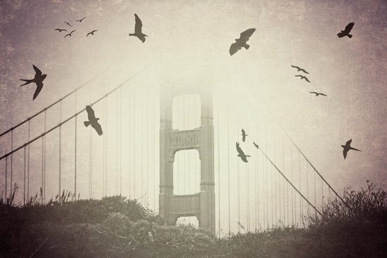 Birds Over the Bridge Art Print