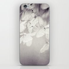 still winter iPhone & iPod Skin