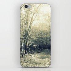 In the Haze iPhone & iPod Skin