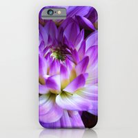 Dahlia - New World iPhone 6 Slim Case