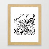 Cherry Blossom #2 Framed Art Print