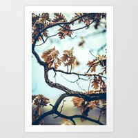 Autumn Branches Art Print