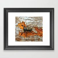 One Tough Bug Framed Art Print