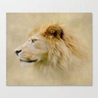 Lion III Canvas Print